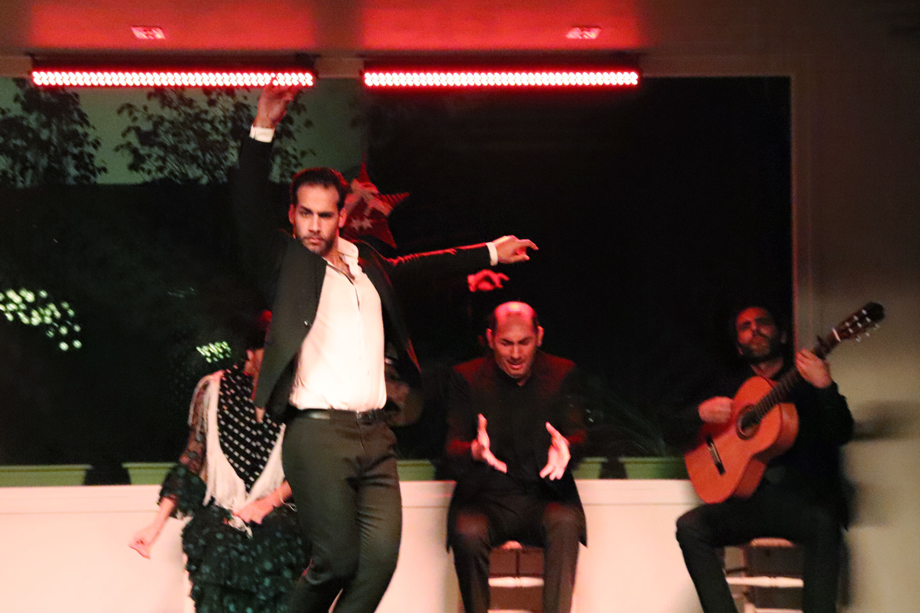 Show flamenco en Tablao la Cantaora Sevilla